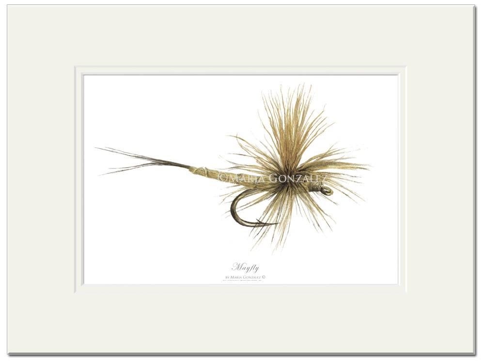 Mayfly Signed Print by Maria Gonzalez