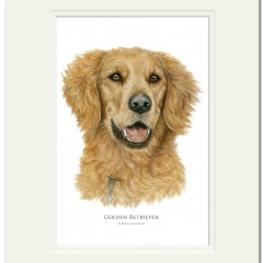 Golden Retriever by Maria Gonzalez