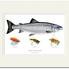Atlantic Salmon & Flies Signed Print by Maria Gonzalez