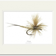 Mayfly Signed Print by Maria Gonzalez